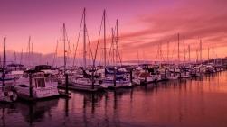 Pier 39, Fishermans Wharf, San Francisco