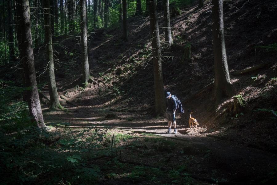 Wandertour_Bad Schandau-151-1